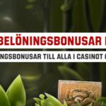 2 casino bonusar om dagen, varje dag hos Unibet!