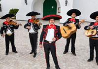 vinn en resa till mexico