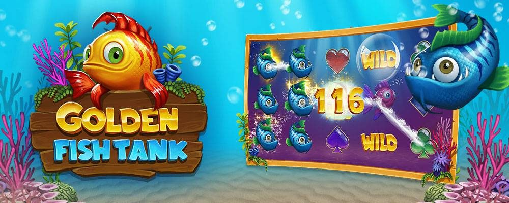 golden-fish-tank-5x2