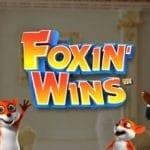 Upp till 20 free spins utan omsättning värda 2,50kr om dagen i spelautomaten Foxin Wins hos Paf